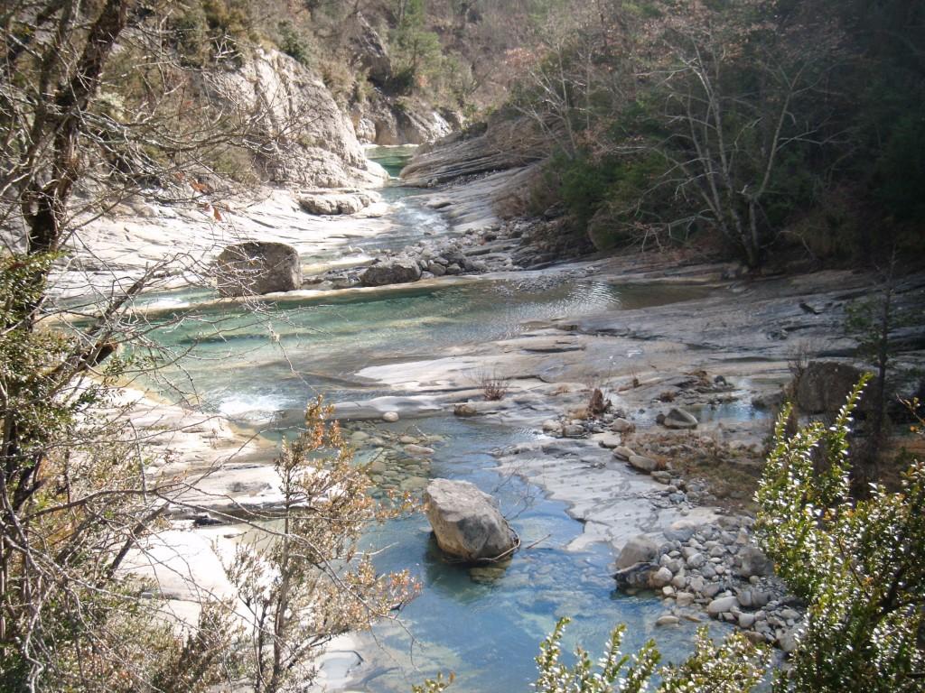 Río Yesa